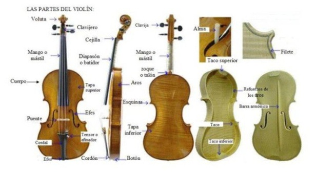 partesviolin